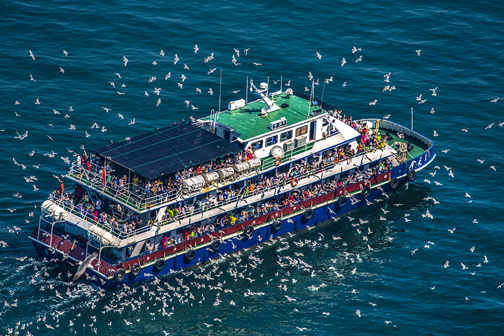 《魅力长岛》2018年6月,省政府批准设立长岛海洋生态文明综合试验区。(张吉华)<br/>