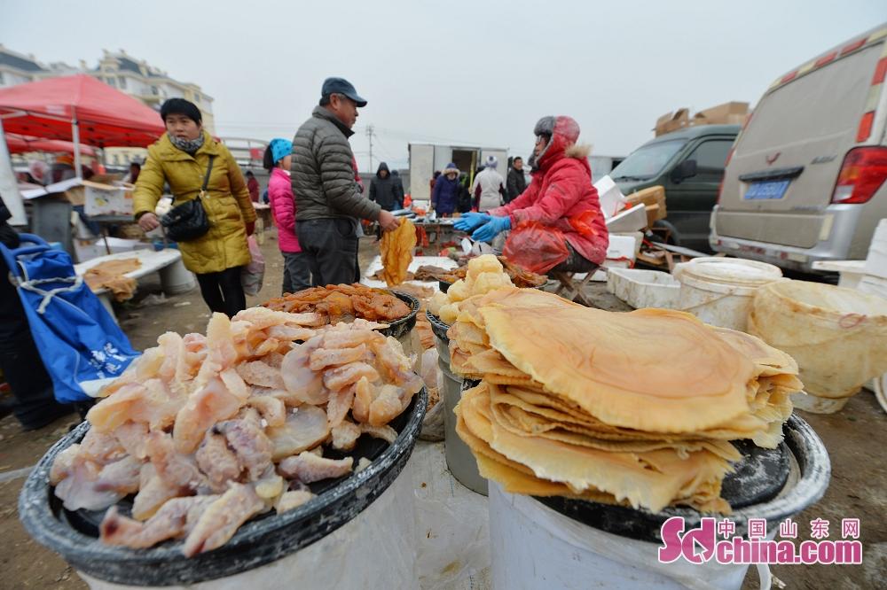시민들이 해파리를 구매한다.<br/>
