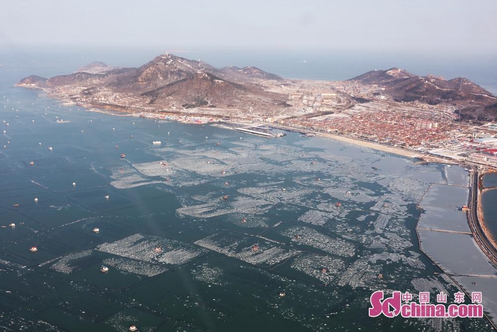 <br/>  2月1日上午,虽然近几天天气转暖,山东省长岛县滨海养殖区仍存有少量浮冰。<br/>