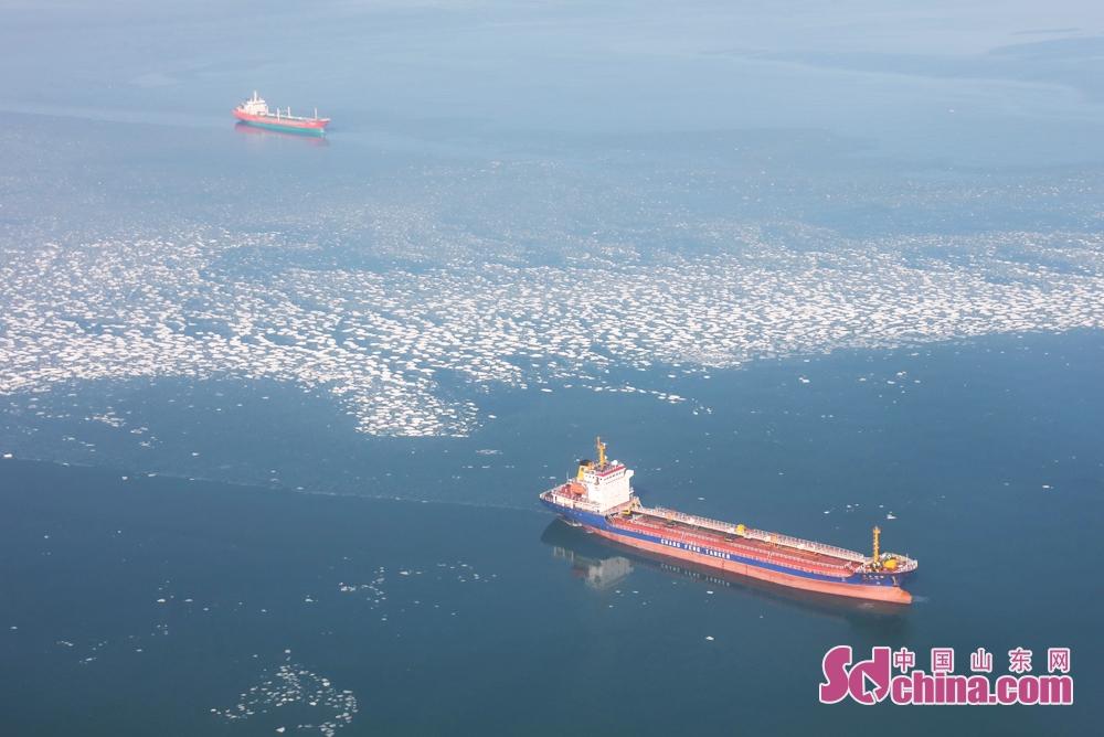 <br/>  2月1日上午,两艘货轮正在进莱州港,目前海冰对烟台辖区船舶航行影响甚微。<br/>