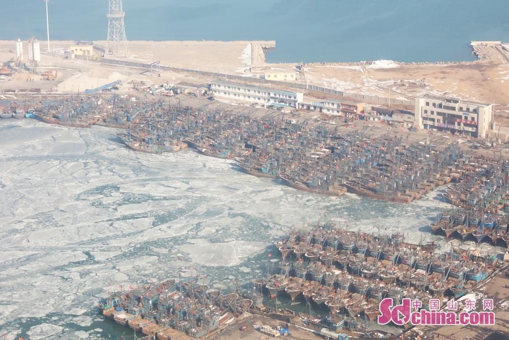 <br/>  2月1日上午,山东莱州三山岛渔港有零星海冰,大量渔船有序停泊在港。