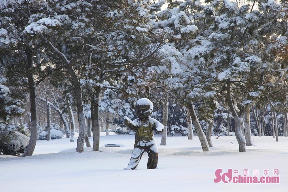 <br/>    从万米金滩到万亩松林,从各大公园到各个社区,全都被皑皑白雪覆盖,一派北国风光。在南海新区的每一处角落,你都能欣赏到大雪带来的无限风光。<br/>