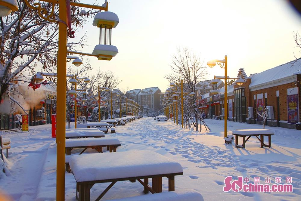 <br/>  第一缕晨光洒在社区,让满地的白雪在晨曦的照耀下散发着迷人的光芒。