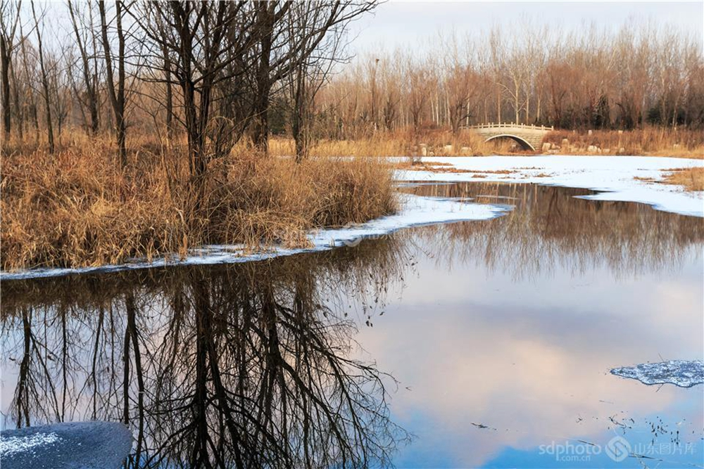 <br/><br/>  白浪河是潍坊的母亲河。白浪河上游的白浪绿洲湿地,是潍坊人及外地游客休闲之佳境。白浪绿洲,一年四季景色不同。每次从湿地走过,都会心旷神怡。本组特用镜头记录白浪绿洲之冬,分享绿洲美景。周建文摄(图片版权归山东图片库所有,未经授权严禁转载)<br/>