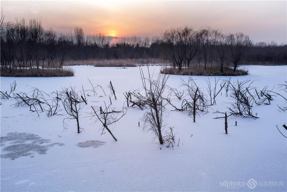 <br/><br/>  白浪河是潍坊的母亲河。白浪河上游的白浪绿洲湿地,是潍坊人及外地游客休闲之佳境。白浪绿洲,一年四季景色不同。每次从湿地走过,都会心旷神怡。本组特用镜头记录白浪绿洲之冬,分享绿洲美景。<br/>
