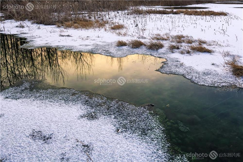 <br/><br/>  白浪河是潍坊的母亲河。白浪河上游的白浪绿洲湿地,是潍坊人及外地游客休闲之佳境。白浪绿洲,一年四季景色不同。每次从湿地走过,都会心旷神怡。本组特用镜头记录白浪绿洲之冬,分享绿洲美景。