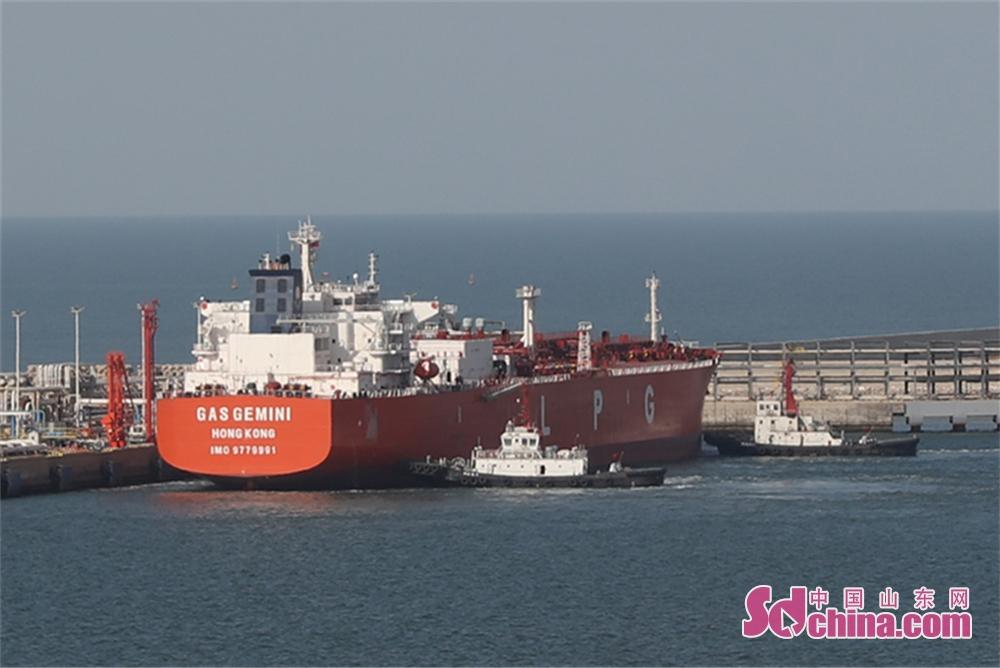 <br/>  除夕下午,一艘由沙特前来的5万吨级液化石油气船正在靠泊烟台港西港区码头准备卸货,以满足节日工业生产需要。<br/>