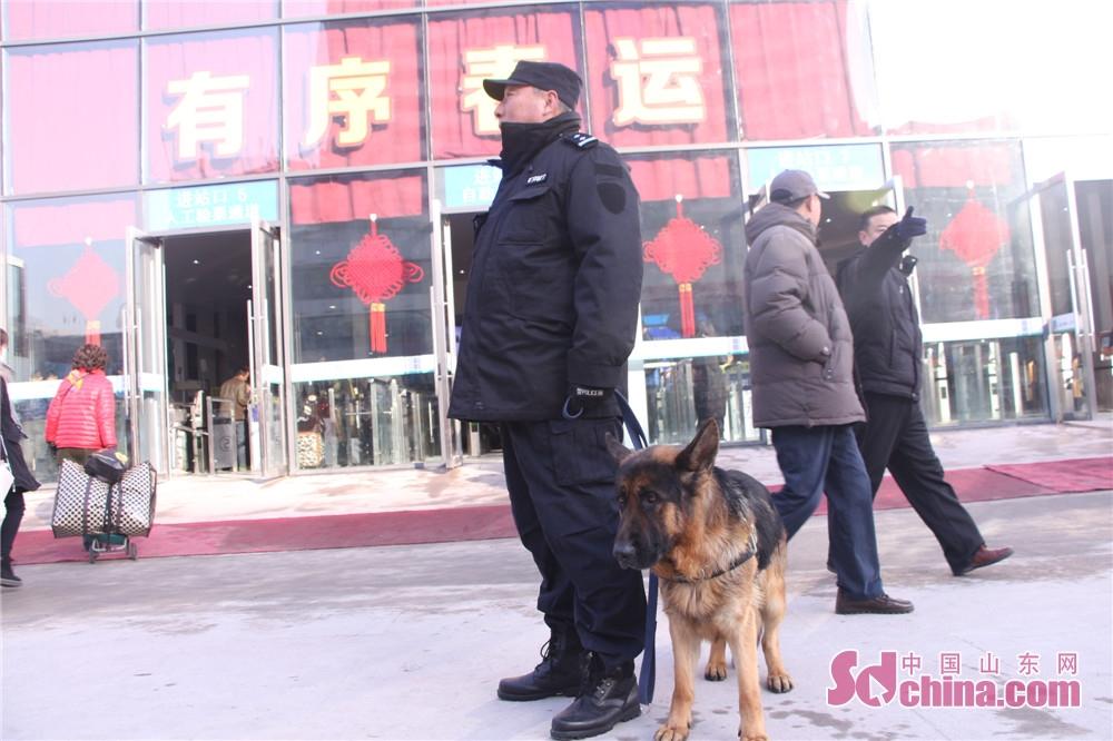 <br/>  济南铁路公安处警犬训导员周培章一直牵着一只德国牧羊犬,在广场上来回巡逻。这只警犬名为&amp;ldquo;勇赛&amp;rdquo;,可别小瞧了这只警犬,在十九大期间,它曾在北京南站负责安保工作。<br/>