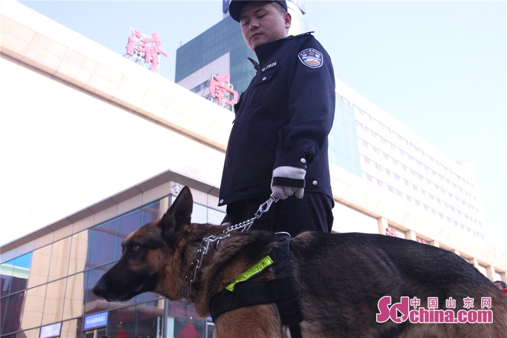 <br/>  与勇赛一起负责安保工作的还有哈瑞等另外三只警犬,他们将在火车站进行安检巡逻,确保乘客安全。<br/>