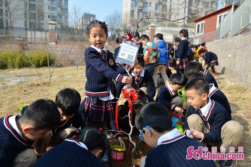<br/>  2018年3月12日,青岛立新小学的孩子们种植班级树,体验与小树共同成长的意义。<br/>