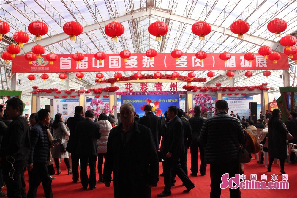 <br/>  16日上午,首届中国多浆(多肉)植物展潍坊青州市花卉苗木交易中心开展,展览将持续至3月18日。<br/>