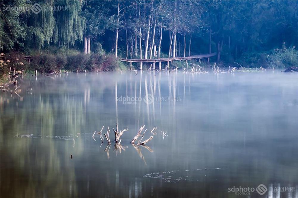 <br/>  白浪河是潍坊的母亲河。白浪河上游的白浪绿洲湿地,是潍坊人及外地游客休闲之佳境。白浪绿洲,一年四季景色不同。每次从湿地走过,都会心旷神怡。周建文摄(图片版权归山东图片库所有,未经授权严禁转载)<br/>