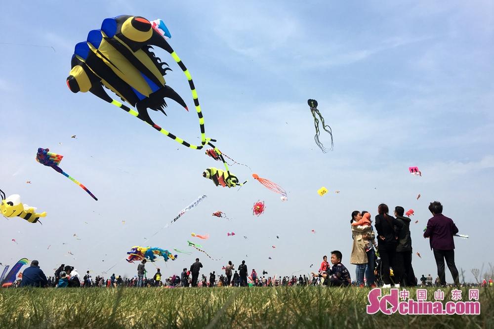 제35기 유방 국제 연 날리기 대회가 유방시 빈해구 광장에 개막한다.<br/>