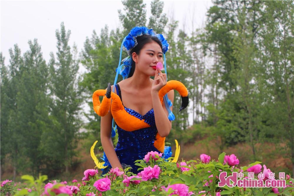 <br/>   玫瑰花一朵有一朵的姿势,看看这一朵亭亭玉立犹如一位美少女。万亩花海中,迎来了几位亭亭玉立的模特与之相呼应。