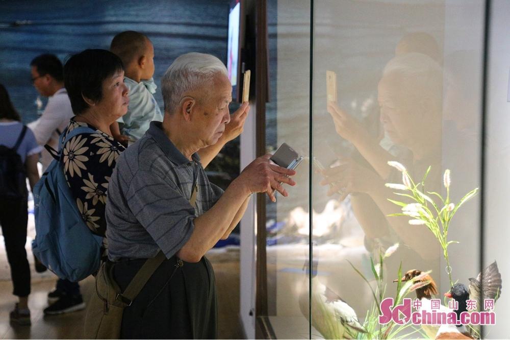 <br/>         市民在博物馆参观展览并拍照留念。