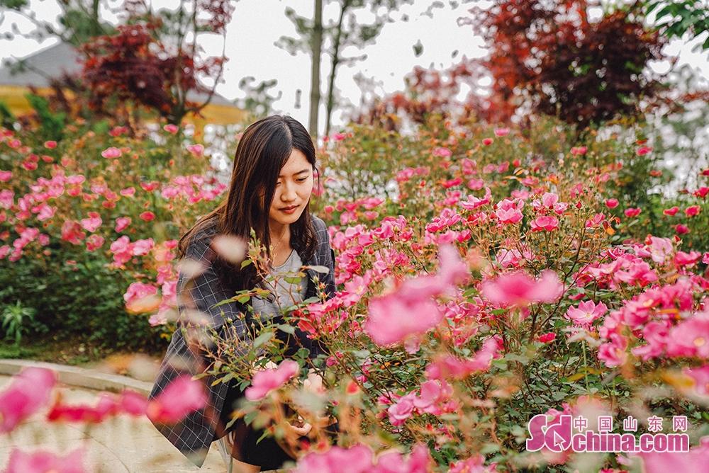 <br/>  生活在这里的居民很幸福,因为在绿色为底色的生态画卷上,总有五颜六色的花朵绽放出来的惊喜。新区的都市魅力和海滨风情,让魅力之花绽放溢香,颜值更加细致入微。