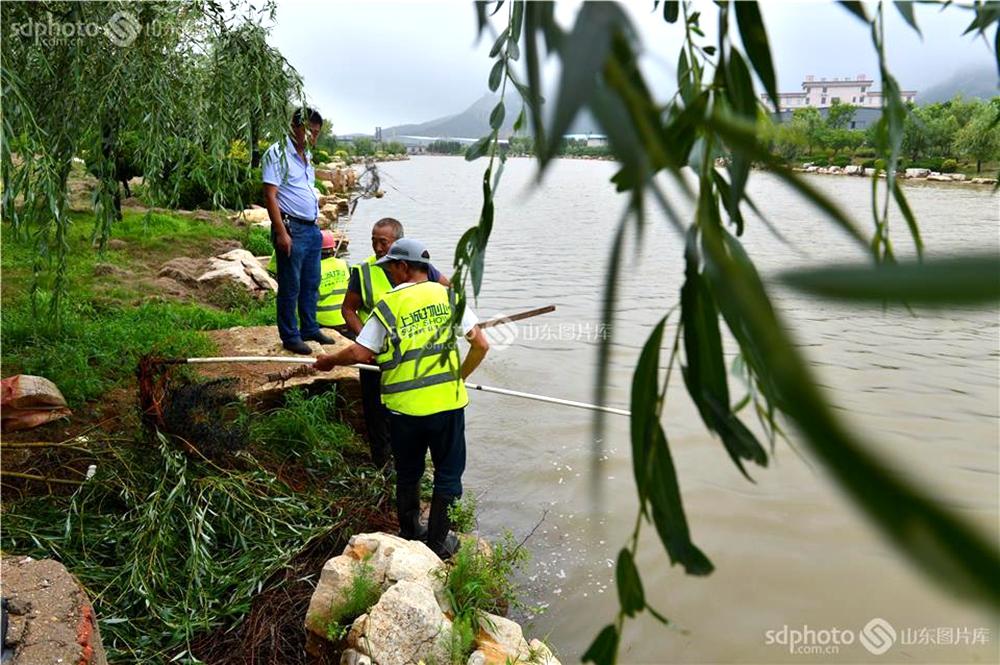<br/>  该河道两岸关停100多家企业,拆迁200多家养殖场,河道清淤,砌筑橡皮坝,河岸安装风景石,经过一年的整治,彻底改善了河流环境,变成了流水潺潺,风景秀丽的观光河。<br/>