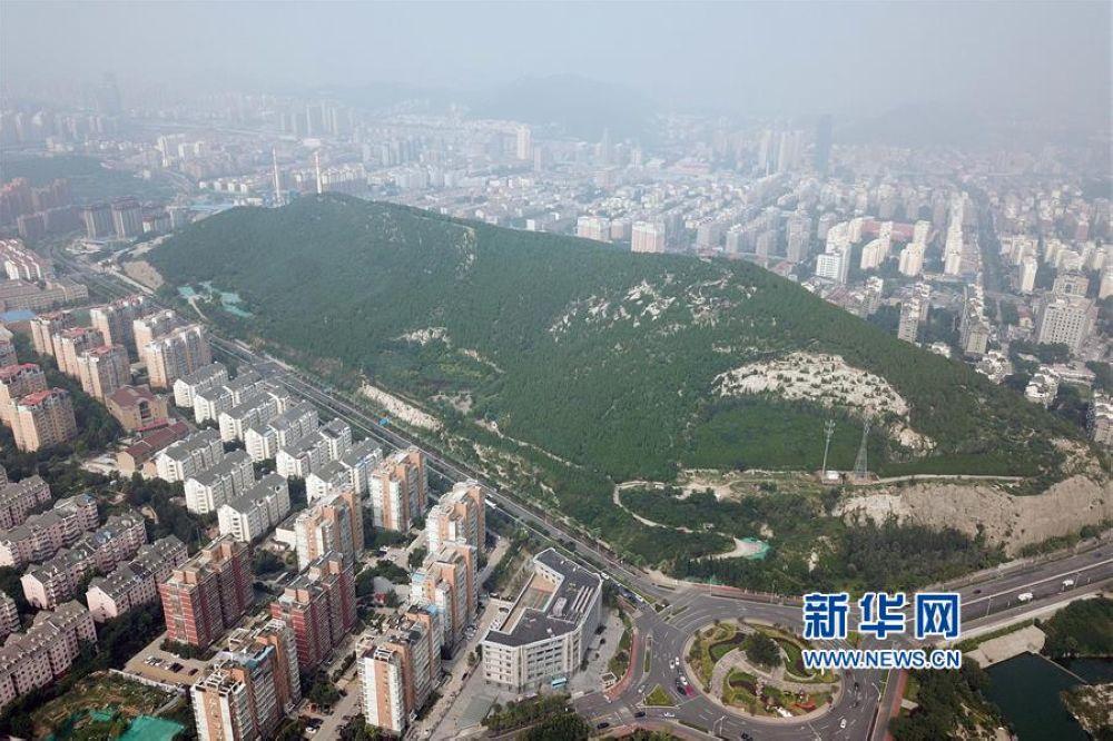 在改善提升空气环境质量的同时,也为济南市民提供了良好的休闲娱乐场所。<br/>