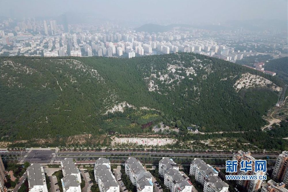 位于济南市旅游西路的卧虎山山体公园(7月6日无人机拍摄)。<br/>
