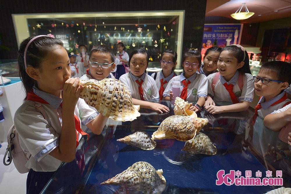 <br/>  孩子们在青岛贝壳博物馆体验吹海螺。<br/>