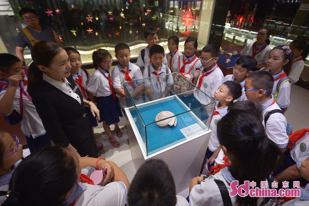 아이들이 박물관에 제일 귀한 조개를 구경한다.