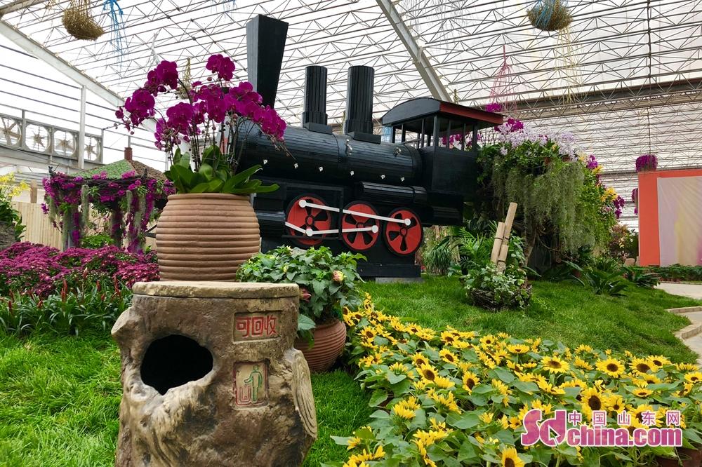 <br/>  今年上半年,全市花卉设施栽培面积达到1140万平方米,多肉植物生产面积突破50万平方米,成为全国最大的多肉植物生产基地,全市花卉年总产值达到85亿元。<br/>