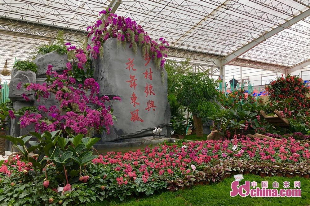<br/>  据了解,本届花博会充分结合电商运营模式和展厅的常态化运营进行展厅布局和招商,打造永不落幕的花博会。<br/>