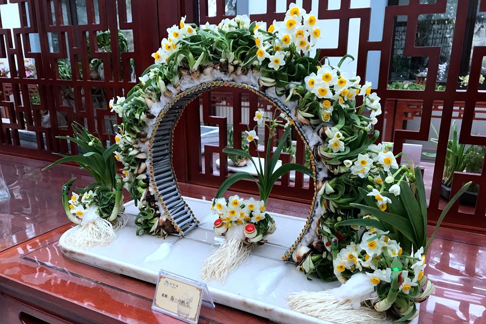 济南天下第一泉风景区第六届迎新春花卉展12日开幕
