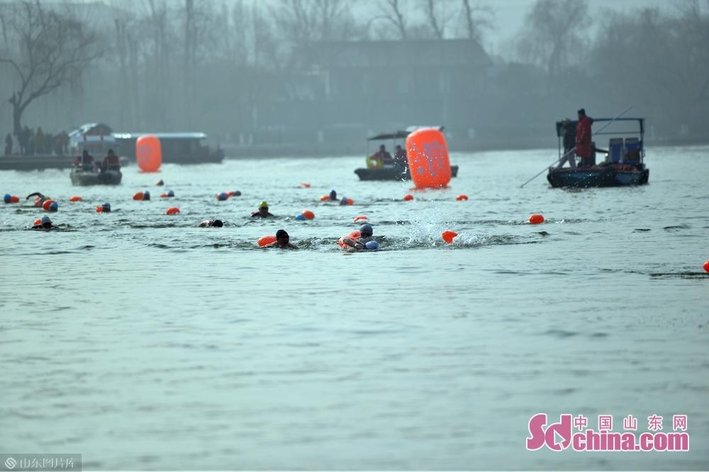 运动员正在向终点游泳。<br/>