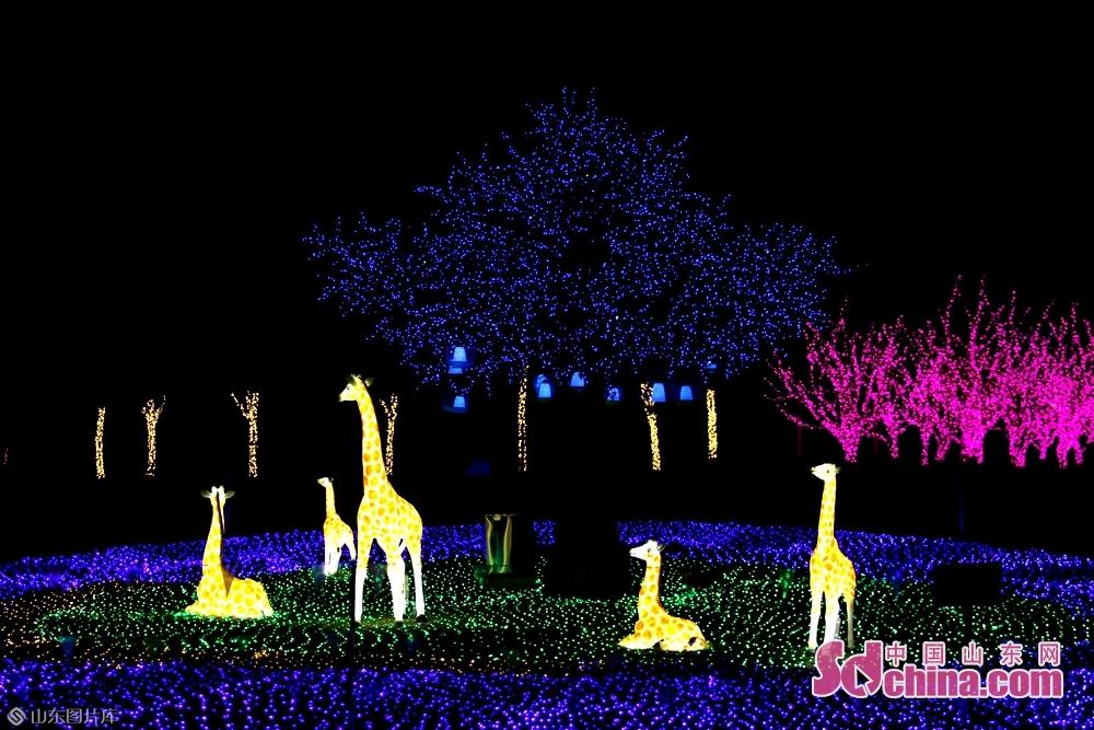 <br/>  任城区森林公园内火树银花,天鹅、长颈鹿花灯灯组造型新颖独特,充满生机。<br/>