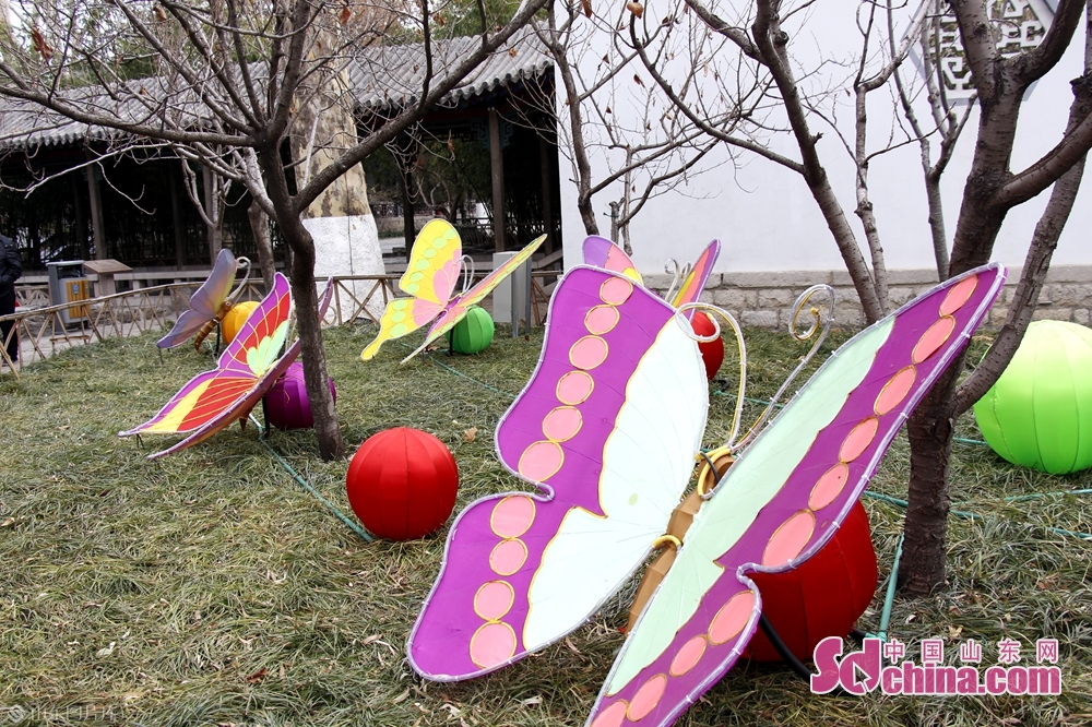 Photo taken on January 9, 2019 shows a set of latern in Baotu Spring Park in Jinan, capital of Shandong Province. The40th Baotu Spring Lantern Festival, highlighting the city&amp;rsquo;s feature of springs and contemporary spirit, is set to raise the curtain in Jinan on February 5, the day of Spring Festival.<br/>