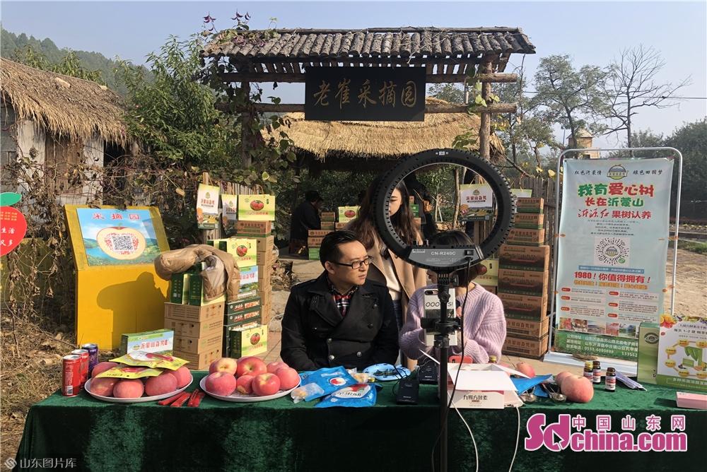 <br/>网红和直播大V在主会场高厂村通过直播的方式帮助果农销售苹果。<br/>
