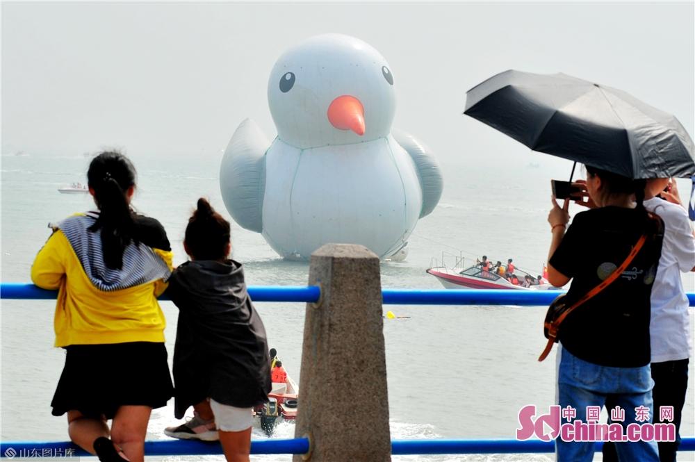 <br/>  10月2日,游客在青岛市栈桥景区观赏&ldquo;巨型&rdquo;红嘴鸥。<br/>
