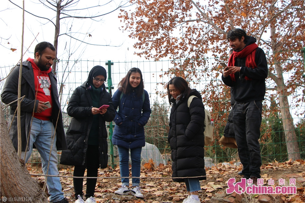 Foreigners take photos on Dec. 18, 2019 in Jiaxiang County, Jining City. Foreigners from four different countries went to Jiaxiang County, the home land of Zeng Zi, to deeply explore Chinese traditional culture.<br/>