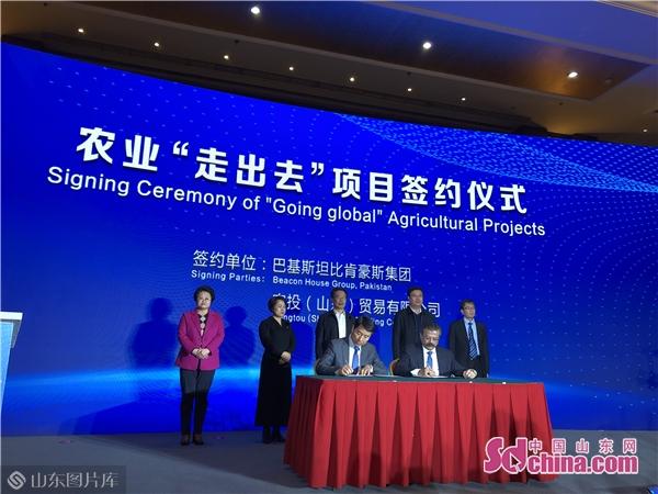 """中国绿色食品协会花生专业委员会成立 农业""""走出去""""项目签约"""