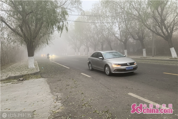 潍坊发布大雾红色预警 部分地区能见度小于50米