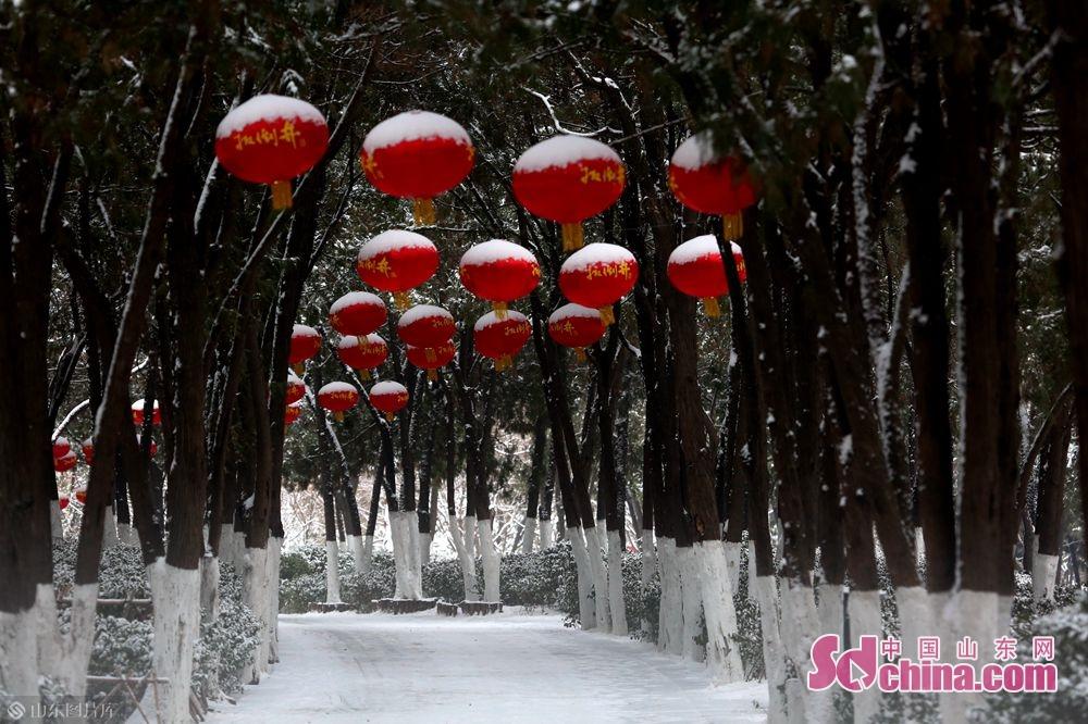<br/>  永利国际投注平台动物园被大雪覆盖,一片银装素裹,平添了几分诗意。<br/>