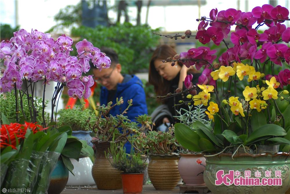 市民は生花を購入している。<br/>