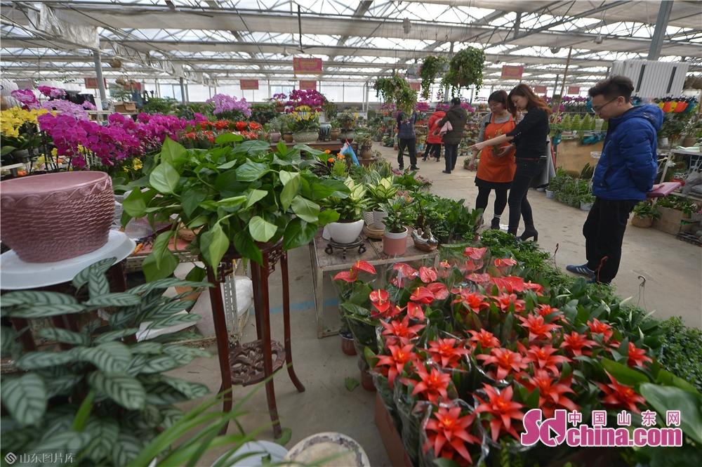 2月21日、市民は生花を購入している。<br/>