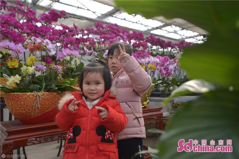 二人の子供は生花の前で写真を撮っている。<br/>