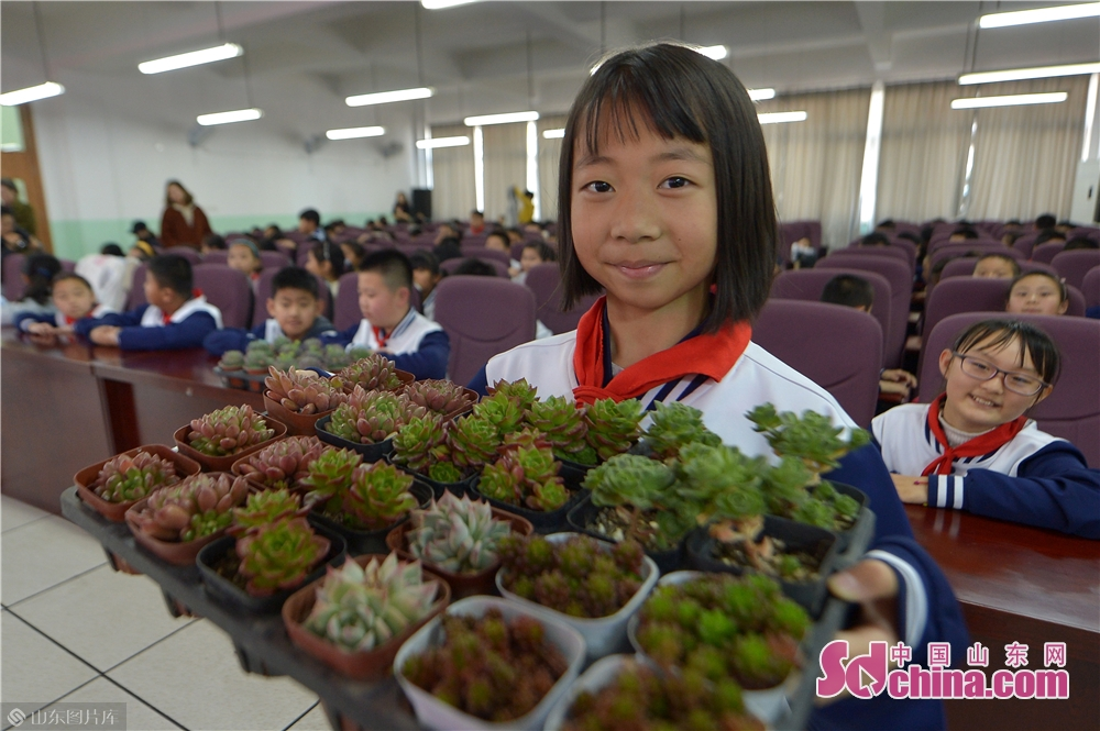 A student of Qingdao Lixin Primary School shows green plants received during the &quot;books for flowers&quot; activity on the Arbor Day in Qingdao, a coastal city of Shandong province on March 12, 2019.<br/>