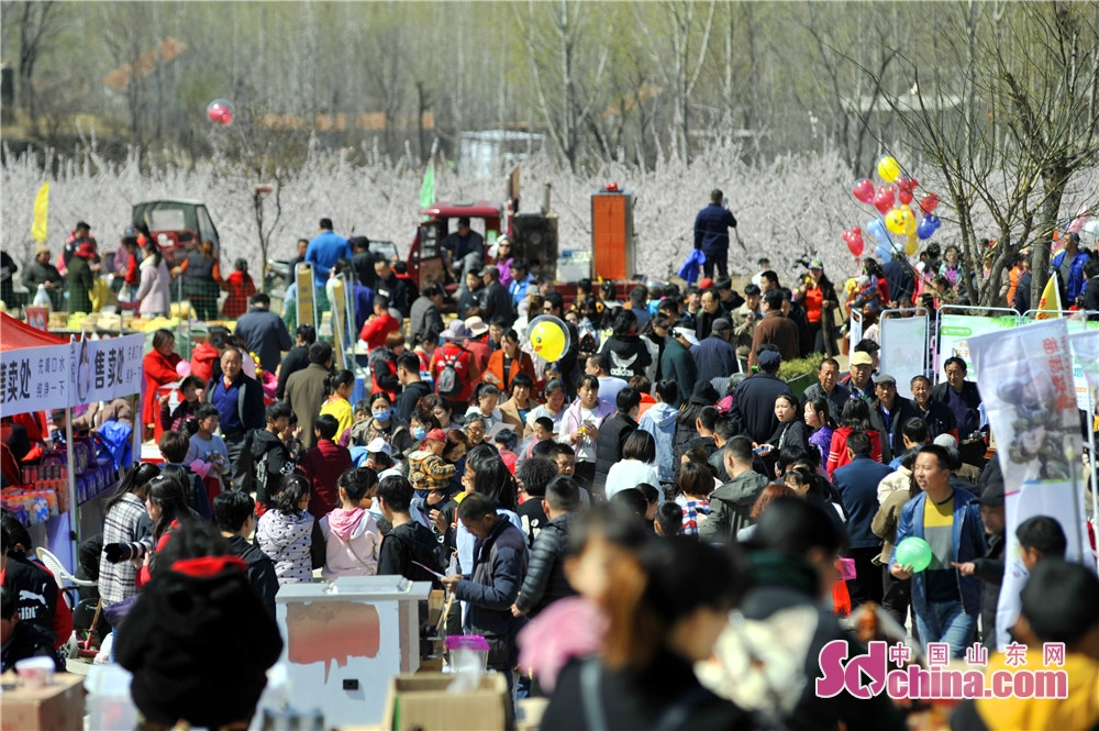Visitors are seen in the opening ceremony of the Apricot Blossom Tourism Festival in Sishui County in Jining, east China&rsquo;s Shandong Province. The Apricot Blossom Tourism Festival kicked off here on Saturday to greet the warm spring.<br/>