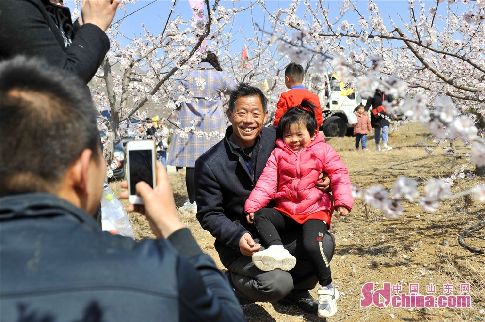 Visitors take photos during the opening ceremony of the Apricot Blossom Tourism Festival in Sishui County in Jining, east China's Shandong Province. The Apricot Blossom Tourism Festival kicked off here on Saturday to greet the warm spring.