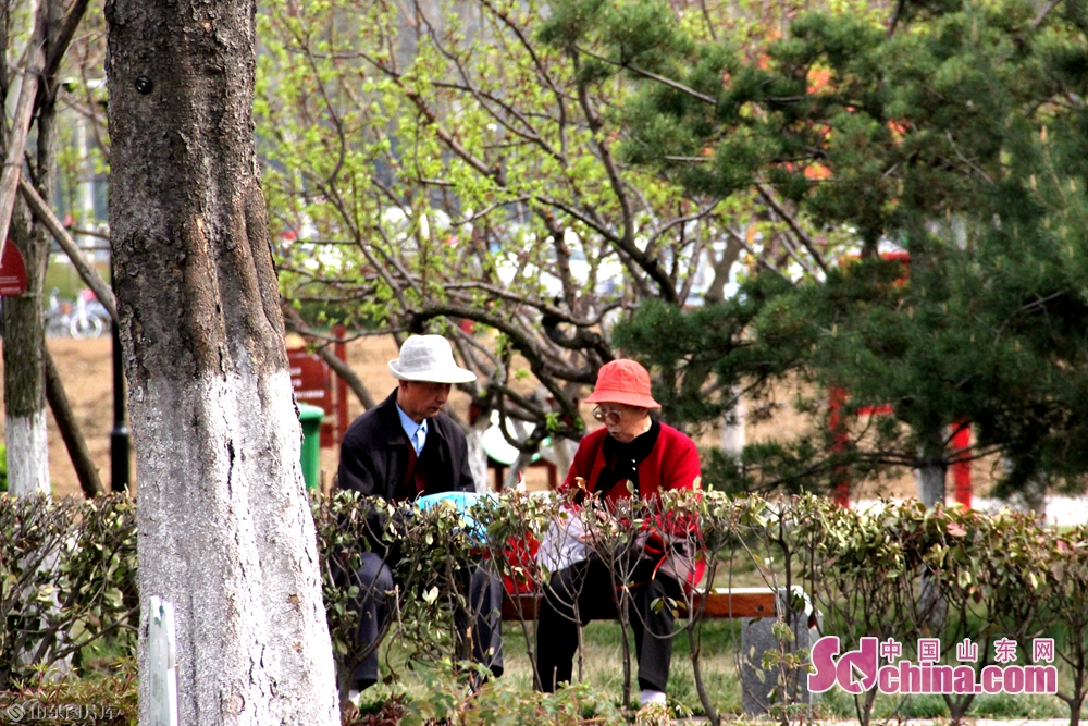 Visitors enjoy spring in Rencheng Forest Park in Jining, east China&rsquo;s Shandong Province on March 27, 2019.<br/>