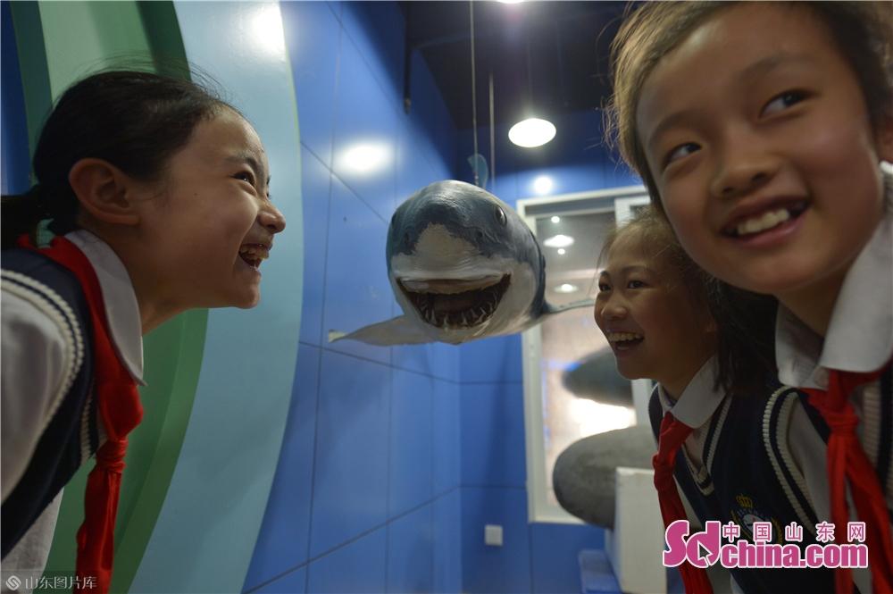 <br/>  3月28日,小学生在青岛中国海洋大学海洋生物博物馆参观噬人鲨后做出可爱的表情。<br/>