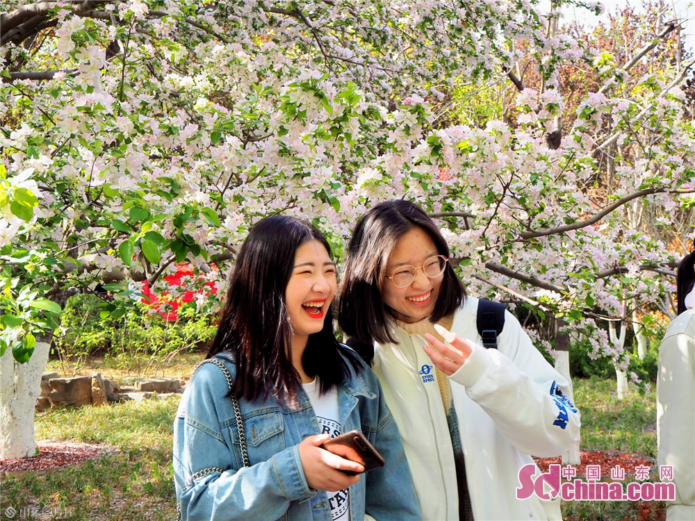 Visitors pose for photos with cherry blossoms in Wulongtan Park in Jinan, Shandong Province on March 30, 2019. The 18th Wulongtan Cherry Blossom Festival has kicked off recently, attracting a large number of tourists to enjoy the flowers.<br/>
