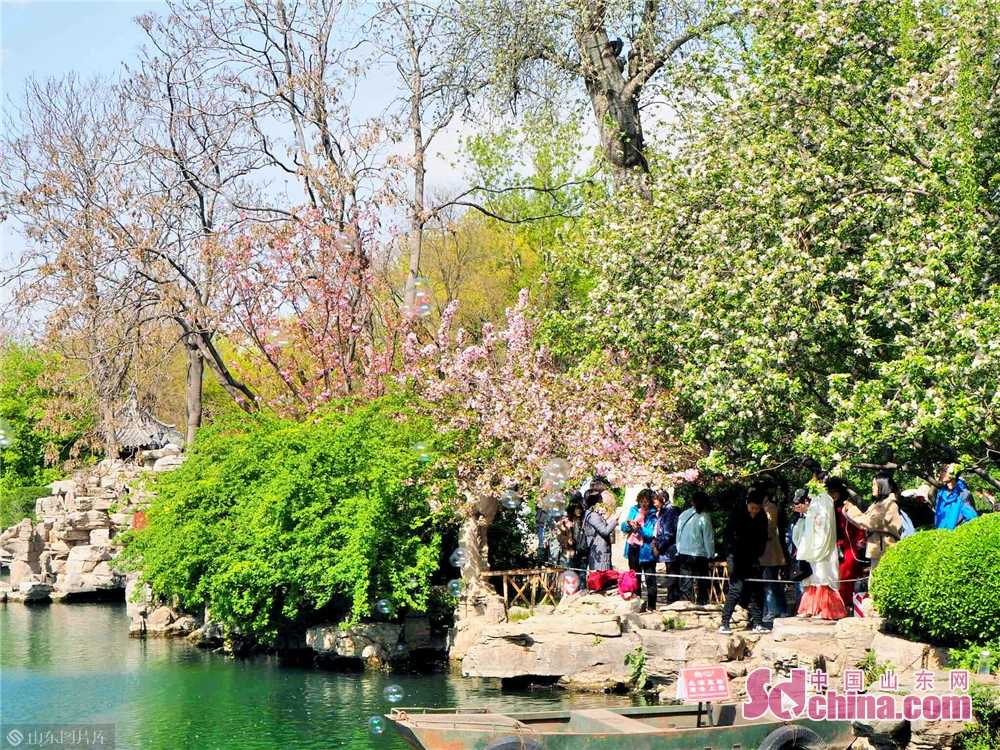 People enjoy the cherry blossoms in Wulongtan Park in Jinan, Shandong Province on March 30, 2019. The 18th Wulongtan Cherry Blossom Festival has kicked off recently, attracting a large number of tourists to enjoy the flowers.<br/>