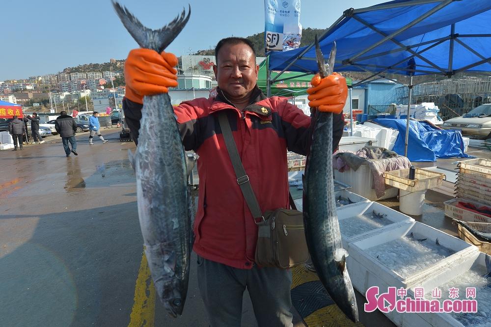 <br/>  渔民在码头上展示鲜鲅鱼。<br/>