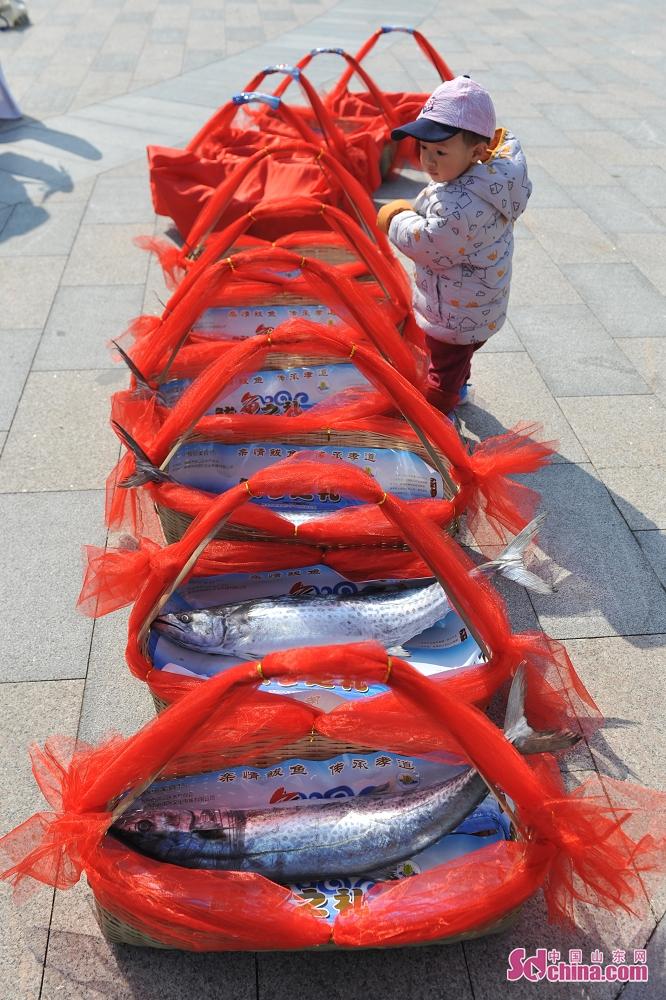 <br/>  一个小朋友在鲅鱼节上观看参赛的&ldquo;鲅鱼王&rdquo;。<br/>