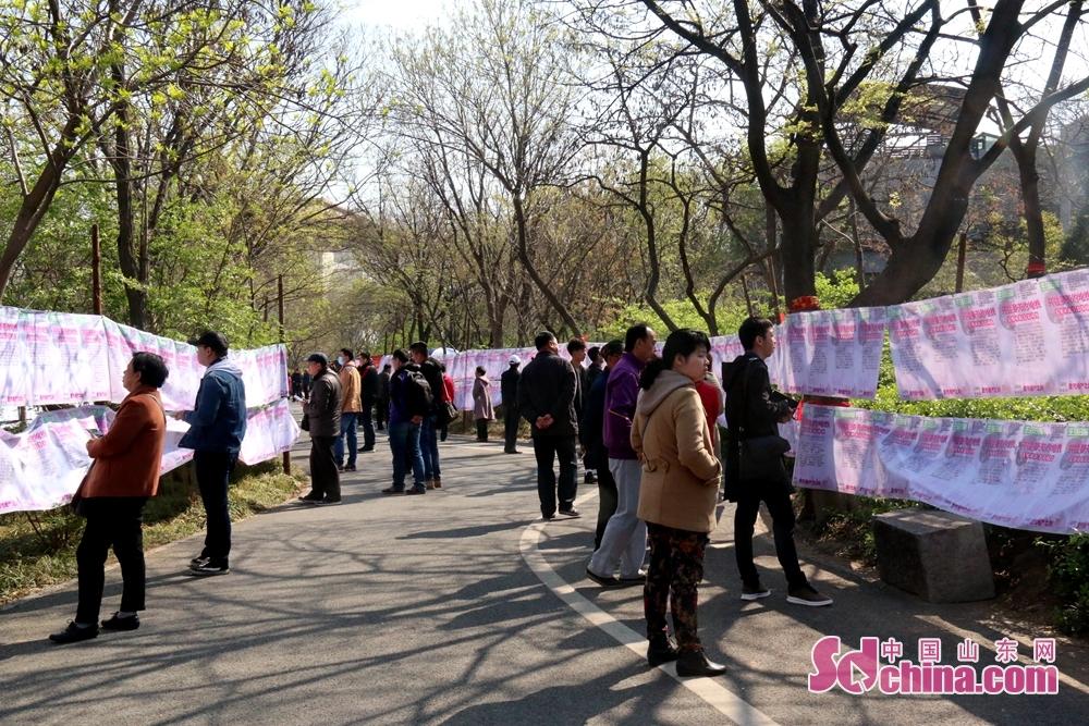 今回の縁日のテーマは「春のピクニック・お花見 多彩な千仏山」で、観光客に自然の風景と民俗文化を提供している。<br/>